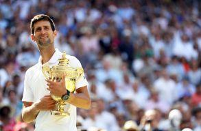 Djokovics könnyedén elintézte Andersont a wimbledoni döntőben